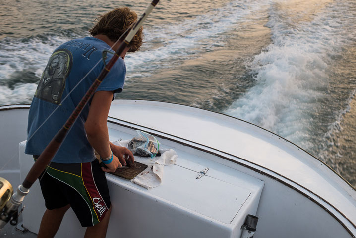 Every mate's job - cutting bait on the way to the fishing grounds ...